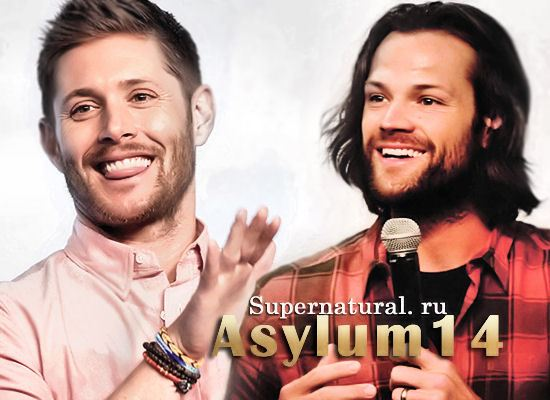 Asylum14-meet-greet