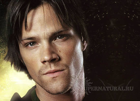 jared-series6